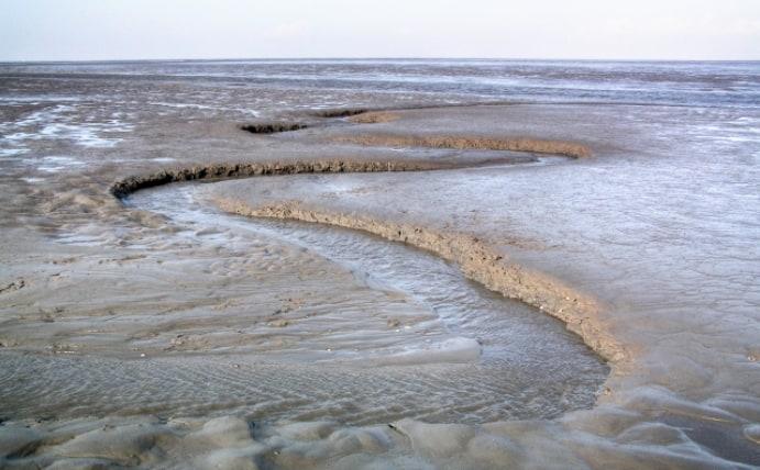 Schleswig-Holsteinisches Wattenmeer